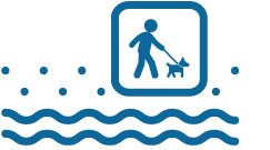 Icona spiaggia animali ammessi - Hotel Sirio a Lido di Camaiore in Versilia, Toscana