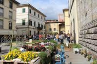 Foto Via Dell'Orto di Camaiore - Hotel Sirio 3 stelle a Lido di Camaiore in Versilia, Toscana